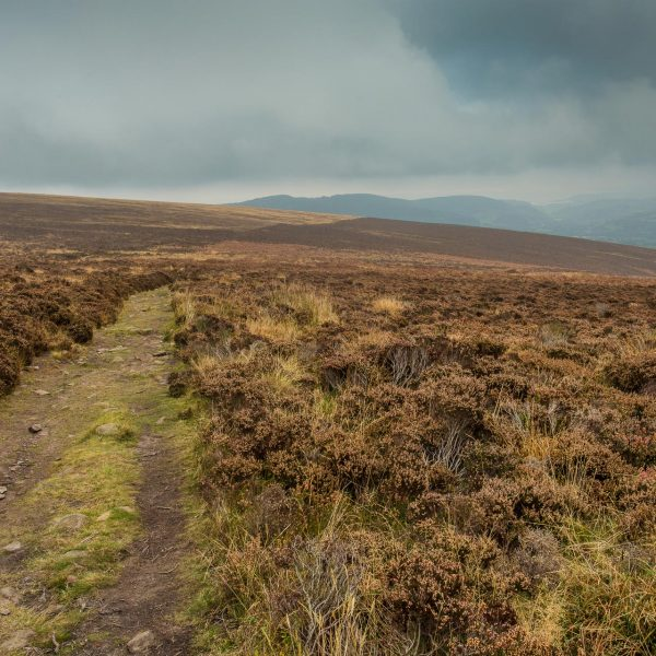Exmoor_landscape_photography-16