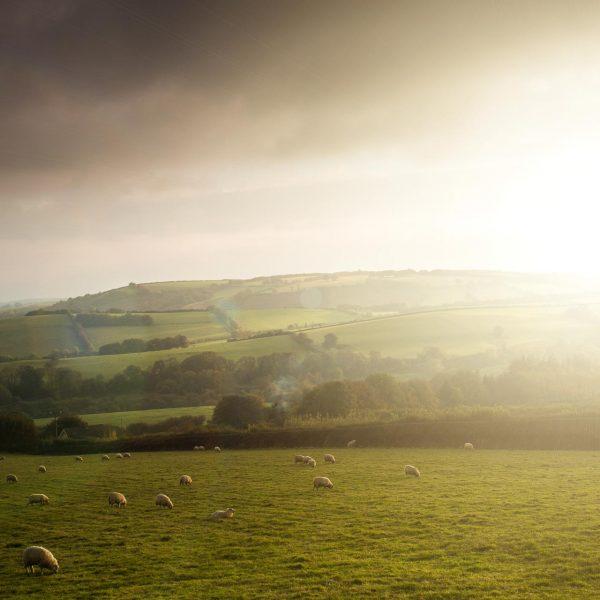 Exmoor_landscape_photography-25