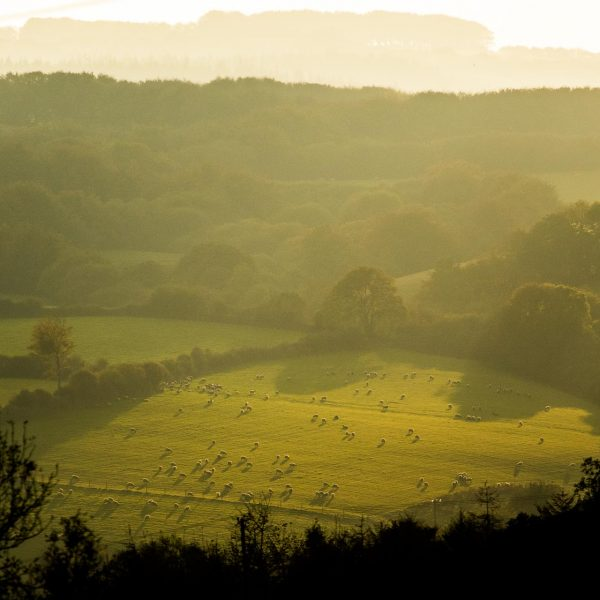Exmoor_landscape_photography-36