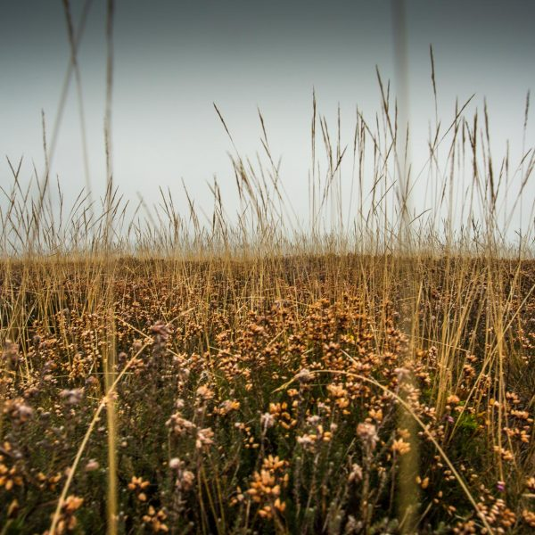 Exmoor_landscape_photography-4