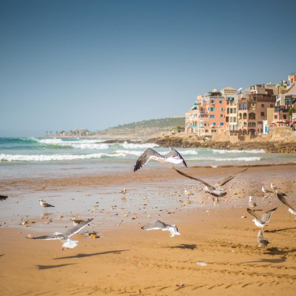 morroco_travel-photography-20