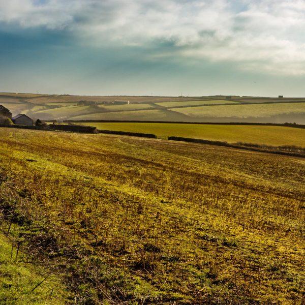 southdevon_landscape_photography-15