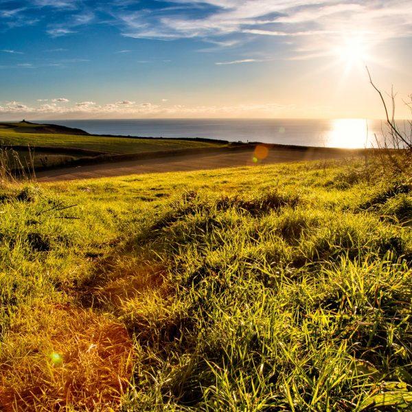 southdevon_landscape_photography-3