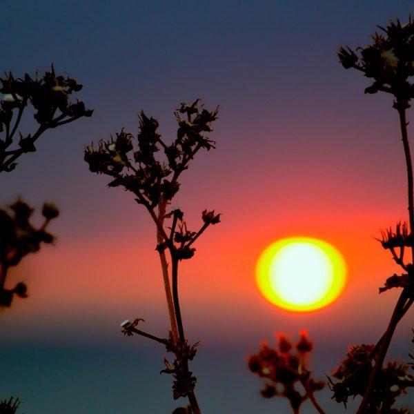 woolacombe_sunset-5